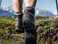Ο Ορειβατικός από την Λικοτιναρά στην Γεωργιούπολη Αποκορώνου