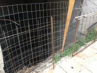 Δημόσιος κίνδυνος στο κέντρο των Χανίων από ασανσέρ-φάντασμα (φωτο)