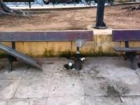 Πλατείες – γκέτο σε εγκατάλειψη στο κέντρο της πόλης των Χανίων