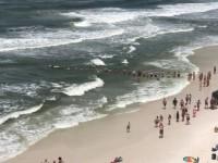 Σχημάτισαν ανθρώπινη αλυσίδα για να σώσουν κολυμβητές (βίντεο)