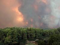 Ημερίδα για τις δασικές πυρκαγιές πραγματοποιείται στο Ρέθυμνο