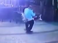 Γάτα... έγδυσε άνδρα όταν έβγαλε τον σκύλο του βόλτα (βίντεο)