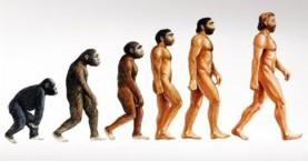 Ανακαλύφθηκε νέο είδος προγόνου του ανθρώπου