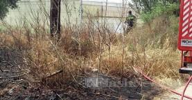 Πυρκαγιά στην Ξυλοκαμάρα - Άμεση επέμβαση της Πυροσβεστικής (φωτο)