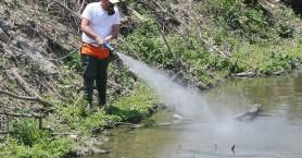 Ψεκασμοί για κουνούπια στον Δήμο Ρεθύμνου