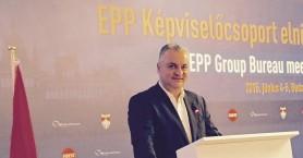 Κεφαλογιάννης:Η υποψηφιότητα Μπακογιάννη στο ΕΛΚ έπρεπε να πάει ως το τέλος