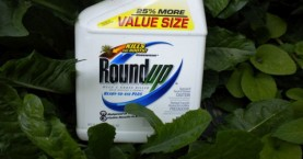 «Πόλεμο» στα φυτοφάρμακα κήρυξε η Γαλλία