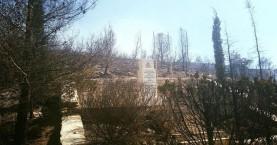 Αναγνωρίστηκε ο νεκρός άνδρας που βρέθηκε στο καμένο δάσος του Καρέα