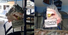 Ο Σόιμπλε στα δίχτυα των Ελλήνων… Τον ψάρεψαν στη θάλασσα του Αιγαίου !!!