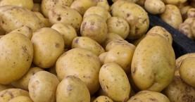 Εξαρθρώθηκε κύκλωμα ελληνοποίησης γαλλικής πατάτας - Συνελήφθησαν 5 άτομα