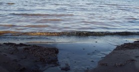 Συναγερμός για θαλάσσια ρύπανση στο Ρέθυμνο