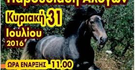 Δεύτερη παγκρήτια παρουσίαση αλόγων στις Βρύσες Αποκορώνου