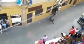 Ταύρος σκοτώνει 47χρονη μητέρα (βίντεο)