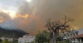 Κάηκαν σπίτια στη Θάσο