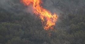 Μεγάλη πυρκαγιά σε χαράδρα στο Ηράκλειο