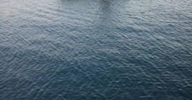 Βρέθηκε αυτοκίνητο μέσα στο λιμάνι του Κόκκινου Πύργου (φωτό)