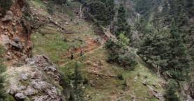 Τραγωδία σε φαράγγι στα Χανιά - Νεκρή γυναίκα που έκανε πεζοπορία