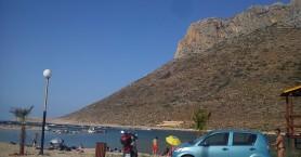 Έκοψαν αρμυρίκια απο την παραλία του Σταυρού στα Χανιά