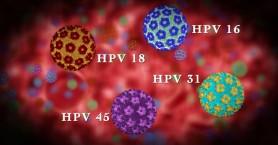 Εκδήλωση για τον ιό HPV στο ΚΑΜ