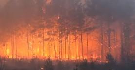 Πολύ υψηλός κίνδυνος πυρκαγιάς σήμερα στην Κρήτη