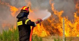 Στην μάχη με τις φλόγες - Πυρκαγιά σε φαράγγι του Λασιθίου