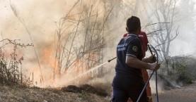 Πυρκαγιά σε περιοχή της Ιεράπετρας