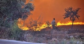 Δραματική η κατάσταση στη Ζάκυνθο: Μάχη όλη τη νύχτα με τη φωτιά