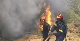Πρόσκοποι μοίρασαν νερά και σάντουιτς στους πυροσβέστες