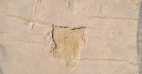 Αδύνατη η διακίνηση των απολιθωμάτων που κλάπηκαν στην Κίσσαμο- Δείτε γιατί