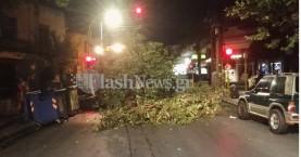 Χανιά: Μετακίνησε τον κάδο απορριμμάτων στην Αποκορώνου και έπεσε το δέντρο