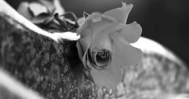 Κρήτη: Χάρισαν χαμόγελα ελπίδας μέσα από το θάνατο του παιδιού τους