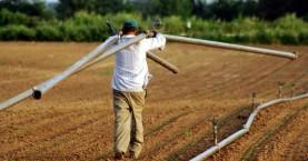 ΠΕΔ Κρήτης: Άμεσα μέτρα στήριξης του πρωτογενούς τομέα