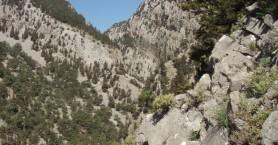 Ο Ορειβατικός Σύλλογος Χανίων στο Φαράγγι Τρυπητής