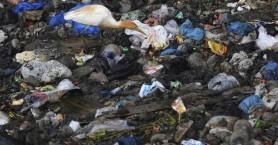 Οι θάλασσες στην Ασία έγιναν ένας παγκόσμιος σκουπιδοτενεκές αποβλήτων