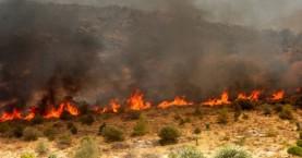 Σε κατηγορία κινδύνου 4 για πυρκαγιά βρίσκονται σήμερα νομοί της Κρήτης