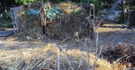 Θρίλερ με σκελετό στη Χρυσή - Βρέθηκε από τουρίστα μέσα σε σακούλα (φωτο)