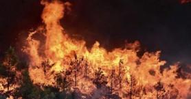 Προσοχή! Βαθμός επικινδυνότητας πυρκαγιάς στο 4 για όλη την Κρήτη
