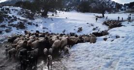 Προσοχή! Προειδοποίηση σε κτηνοτρόφους και ιδιοκτήτες σκαφών λόγω καιρού!