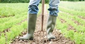Μόνο οι αγρότες με χρέη πάνω από τα 3.600 ευρώ θα εντάσσονται στη ρύθμιση των 120 δόσεων