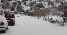 Και πάλι στα λευκά ο Ομαλός (φωτο)