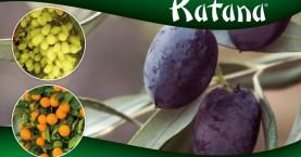 Επίδειξη-παρουσίαση για το νέο πολυδύναμο ζιζανιοκτόνο KATANΑ-Σάββατο 09/03 στο Κολυμβάρι