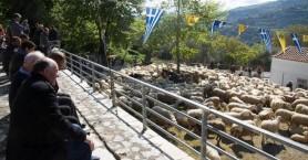 Η ευλογία των προβάτων στην Ασή Γωνιά του δήμου Αποκορώνου