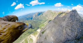 Μια πτήση πάνω από τις Άλπεις με τα μάτια ενός αετού