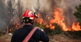 Φωτιά σε δύσβατη περιοχή στα Λιβάδια