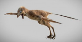 Ανακαλύφθηκε στην Κίνα ένας ασυνήθιστος μικροσκοπικός δεινόσαυρος με φτερά νυχτερίδας