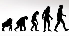 Η νέα θεωρία για τον λόγο που οι άνθρωποι… κατέβηκαν από τα δένδρα