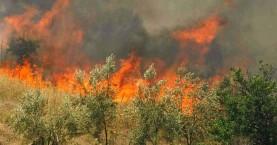 Πολύ υψηλός ο κίνδυνος πρόκλησης πυρκαγιάς το Σάββατο σε όλη την Κρήτη