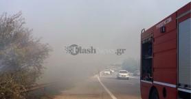 Πυρκαγιά σε σκουπίδια μέσα σε καλαμιώνα στο Κολυμπάρι Χανίων (φωτο – βίντεο)