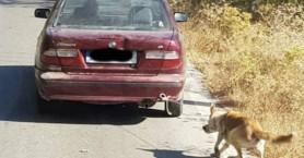 Απίστευτο: Έδεσε τον σκύλο στο αμάξι και τον έσερνε (φωτο)