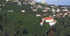 Λήγει η προθεσμία για τη νέα κατάρτιση των δασικών χαρτών της Κρήτης